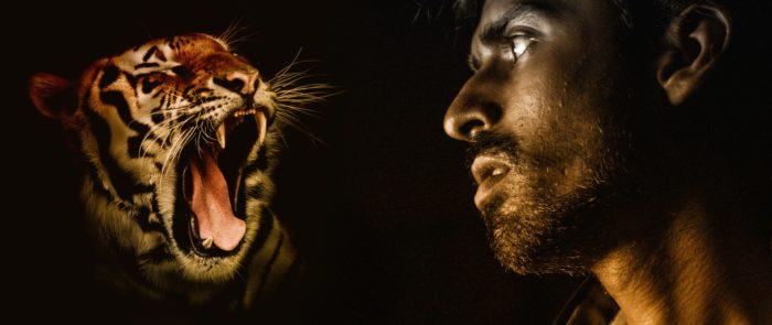 虎が男性をいかくする