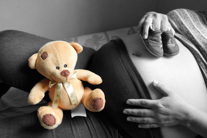 クマと妊婦のお腹